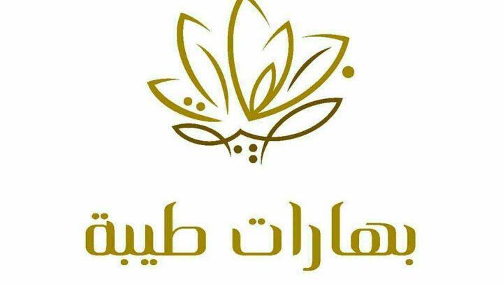تصميم شعارات (logos)